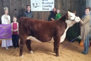LillyRaber_GC_H_OH_Hereford_Futurity_Show_977x658