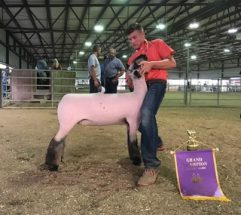 TrentGeorge_GC_ML_BerrienCoYouthFair_50