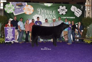 ChanceAustin_4thOverall_Maine_Heifer_MaineJrNats_1_977x658