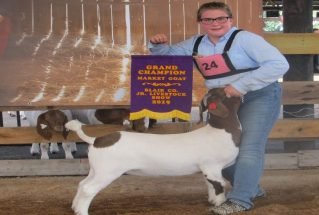 LynnaeDibert_GC_MG_BlairCoJrLivestockShow_1_977x658