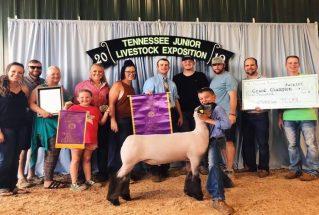 MarshalHull_GC_ML_TN_Jr_Livestock_Expo_977x658