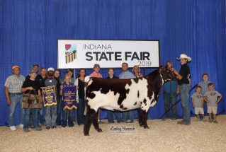 ZavierFerris_C_Shorthorn_H_IN_SF_977x658