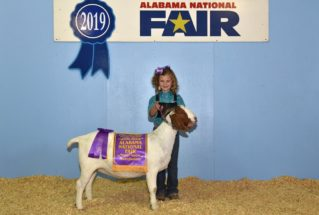 ClaireSmith_ChampionFullbloodDoe_AlabamaNationalFair_977x658