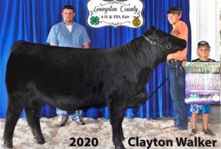 ClaytonWalker_SC_H_LivingstonCF_977x658-319×215