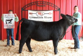 JaredSheriff_GC_H_StephensCoLivestockShow_977x658-319×215