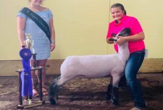 Kate_Hicks_2020_Grand_Champion_Market_Lamb__Fayette_County_Fair_977x658-319×215