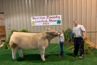 alleystaines_gc_ms_berriencolivestockshow_977x658-319×215