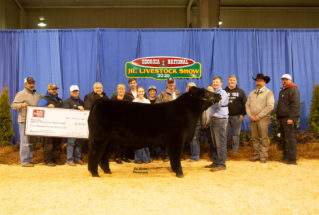 tannernorton_gc_ms_ga_national_jr_livestock_show_977x658-319×215
