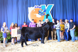 CollinDeatsman_5th_OverallHeifer_NationalJrAngusShow_977x658