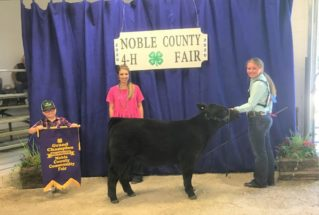 RachaelRogers_GC_FeederBeef_NobleCo4HFair_977x658