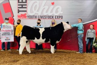 BillyKegley_C_Simmental_MS_OYLE_977x658