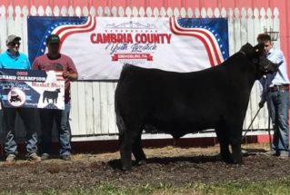 DaltonLee_GC_MS_CambriaCoYouthLivestockShow_977x658